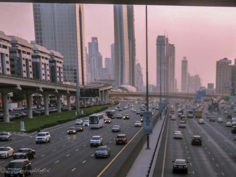 sheikh zayed-3403