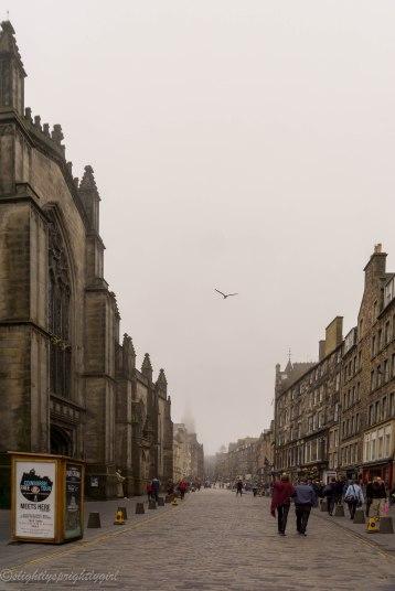 Foggy morning in Edinburgh street